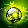 Living_Environment